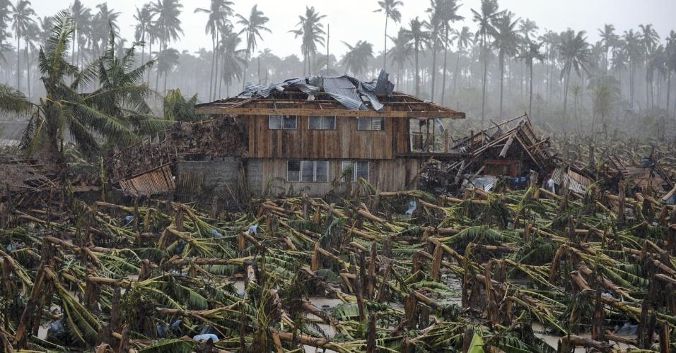 7.dez.2012 - Plantações de bananas ficaram arrasadas na cidade de Nova Bataan, no sul das Filipinas, após a passagem do tufão Bopha