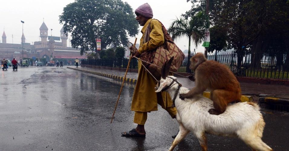 13.dez.2012 - Homem passeia com macaco treinado e um bode em Lahore, no Paquistão