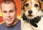 Do cão Uggie ao peladão Lucas, veja quem brilhou por 15 min em 2012 - Montagem/UOL