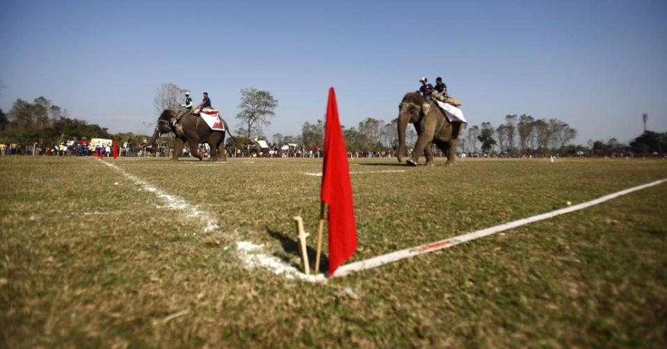 Elefantes participam de corrida no Nepal; até a próxima sexta-feira, além de corridas os elefantes deverão disputar uma partida de futebol