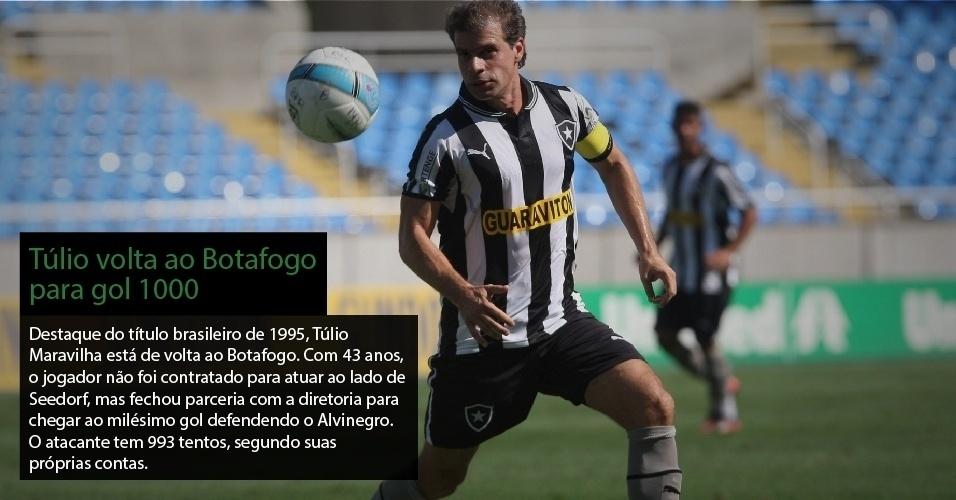 Destaque do título brasileiro de 1995, Túlio Maravilha está de volta ao Botafogo. Com 43 anos, o jogador não foi contratado para atuar ao lado de Seedorf, mas fechou parceria com a diretoria para chegar ao milésimo gol defendendo o Alvinegro. O atacante tem 993 tentos, segundo suas próprias contas.