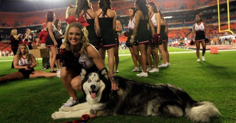 01.jan.2013 - Cheerleader do Northern Illinois Huskies, de futebol americano universitário, faz carinho no mascote da equipe
