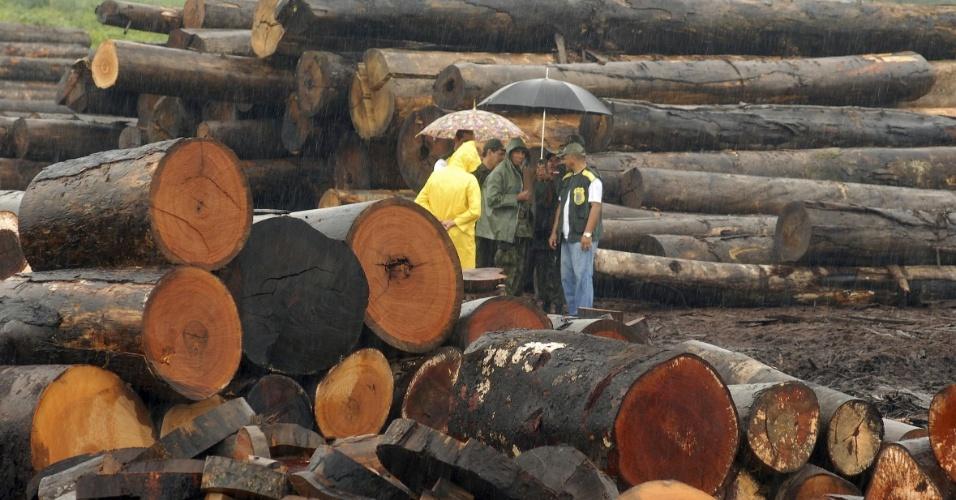 2.jan.2012 - A Comissão de Finanças e Tributação da Câmara dos Deputados aprovou um projeto para criar o Programa Nacional de Qualidade Ambiental, que estabelece regras para a compra de produtos madeireiros pelo poder público. A ideia é evitar que o governo compre produtos extraídos de forma ilegal das florestas brasileiras, em especial a Amazônia