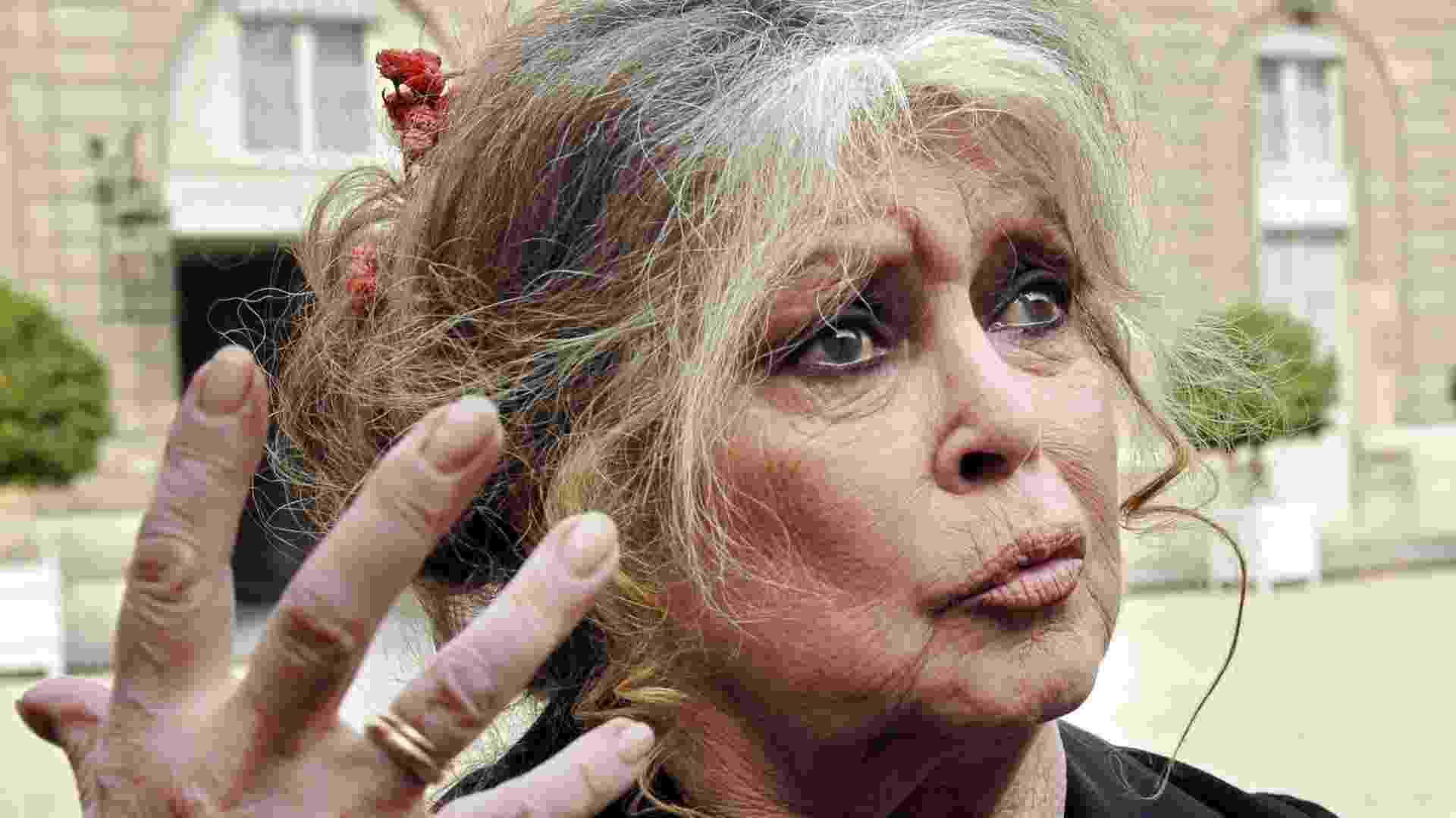 4.jan.2013 - A atriz francesa Brigitte Bardot ameaça deixar seu país e pedir a nacionalidade russa caso o governo aplique eutanásia a dois elefantes em Lyon, no sudeste da França - Eric Feferberg/AFP