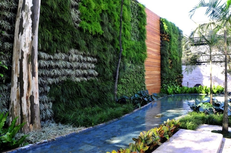 Neste projeto, do arquiteto e paisagista Alex Hanazaki, o espelho d'água compõe o jardim vertical