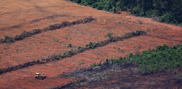 Orçamento real do Inpe encolheu 70% em sete anos e ameaça monitoramento da Amazônia