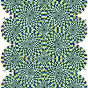 """Ilusão de ótica: """"cobras rotativas"""" por Akiyoshi Kitaoka - Reprodução"""