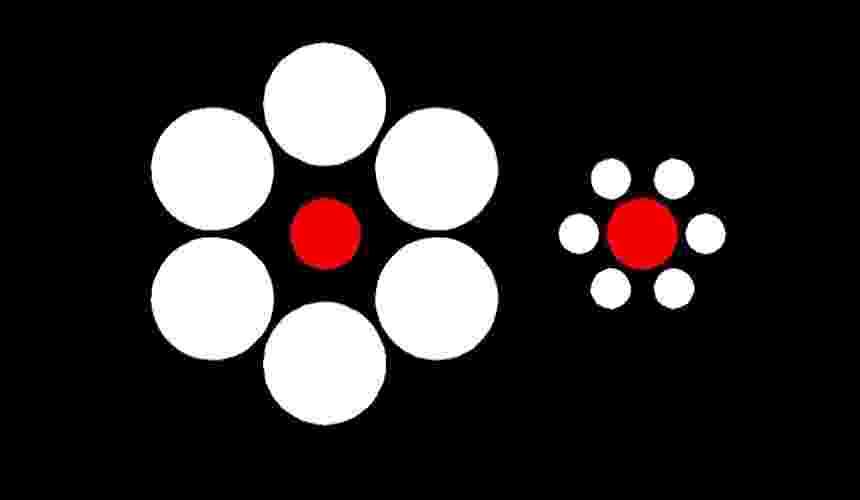 Ilusão de ótica: tamanho - Reprodução