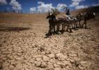 Lunae Parracho/Reuters