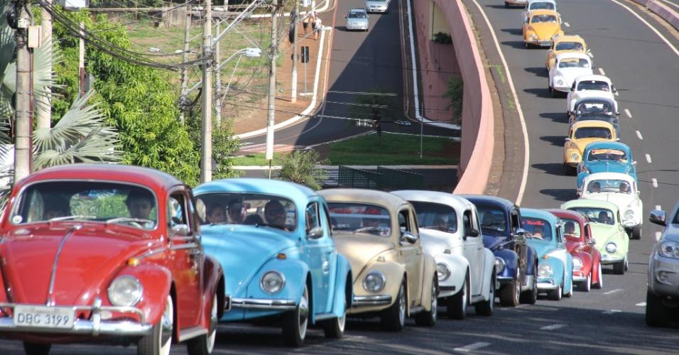 19.jan.2013 - Carreata de fusca passeia pelas ruas de Ribeirão Preto (SP) em homenagem ao Dia Nacional do Fusca, que é comemorado amanhã (20)