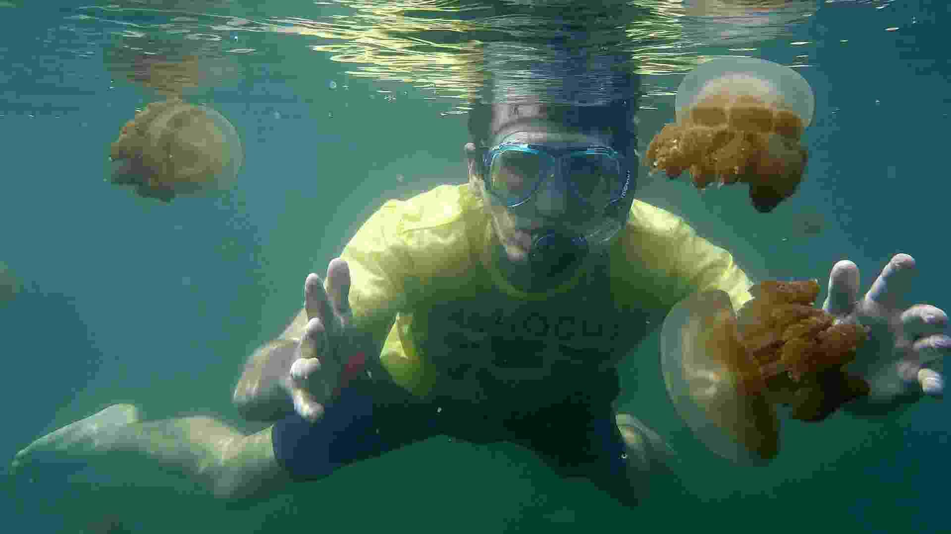 21.jan.2013 - Turista é cercado por águas-vivas não venenosas em lago de água salgada de Kakaban, que fica em uma região desabitada da ilha de Bornéu, na Indonésia. Os tentáculos desses animais perderam o poder tóxico e urticante depois que passaram a viver em um habitat sem espécies predadoras - Paula Regueira Leal/EFE