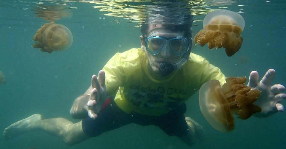 21.jan.2013 - Turista é cercado por águas-vivas não venenosas em lago de água salgada de Kakaban, que fica em uma região desabitada da ilha de Bornéu, na Indonésia. Os tentáculos desses animais perderam o poder tóxico e urticante depois que passaram a viver em um habitat sem espécies predadoras