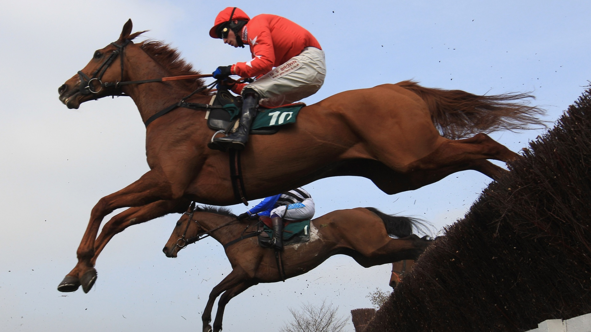 14.mar.2012 - Cavalo Harry The Viking, de propriedade do treinador do Manchester United, Alex Ferguson, compete na Diamond Jubilee National Hunt, na Inglaterra