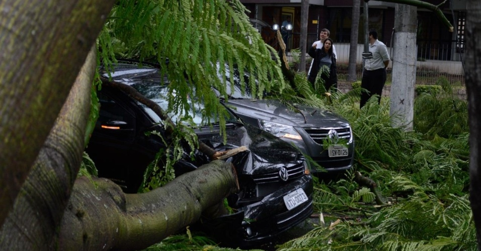 25.jan.2013- Uma árvore caiu em cima de dois carros e um ônibus em uma rua do bairro Petrópolis, em Porto Alegre (RS). Na queda, a árvore ainda atingiu a rede elétrica, arrebentando os fios de alta tensão. O trânsito precisou ser bloqueado. Não houve feridos