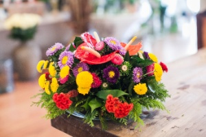 Monte uma horta ou floreira vertical com comedouro e atraia os passarinhos - Fernando Donasci/ UOL