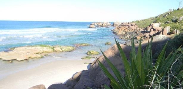 Galheta - Florianópolis (SC): entre duas das praias mais movimentadas da Ilha de Santa Catarina (Barra da Lagoa e Mole), a praia é acessada por uma trilha de 300 metros  - Brasil Naturista/Divulgação