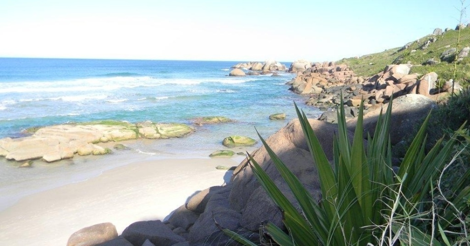 Galheta (SC) - Localizada em Florianópolis, a praia tem areia branca e mar de águas verdes. O acesso é feito a pé, em um trajeto que leva 15 minutos a partir da praia Mole