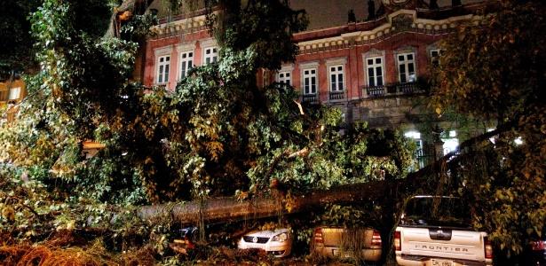 Na região central do Rio, no largo do Machado, árvores caíram em carros que estavam estacionados