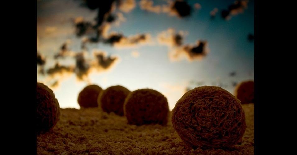 6.fev.2013 - Cerealism, parte de trabalho do artista americano Ernie Button, que usa cereais para recriar lugares e objetos