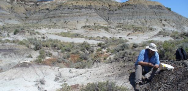 Impacto do asteroide Chicxulub deixou uma imensa cratera no México e levou à extinção dos dinossauros não voadores - Courtney Sprain