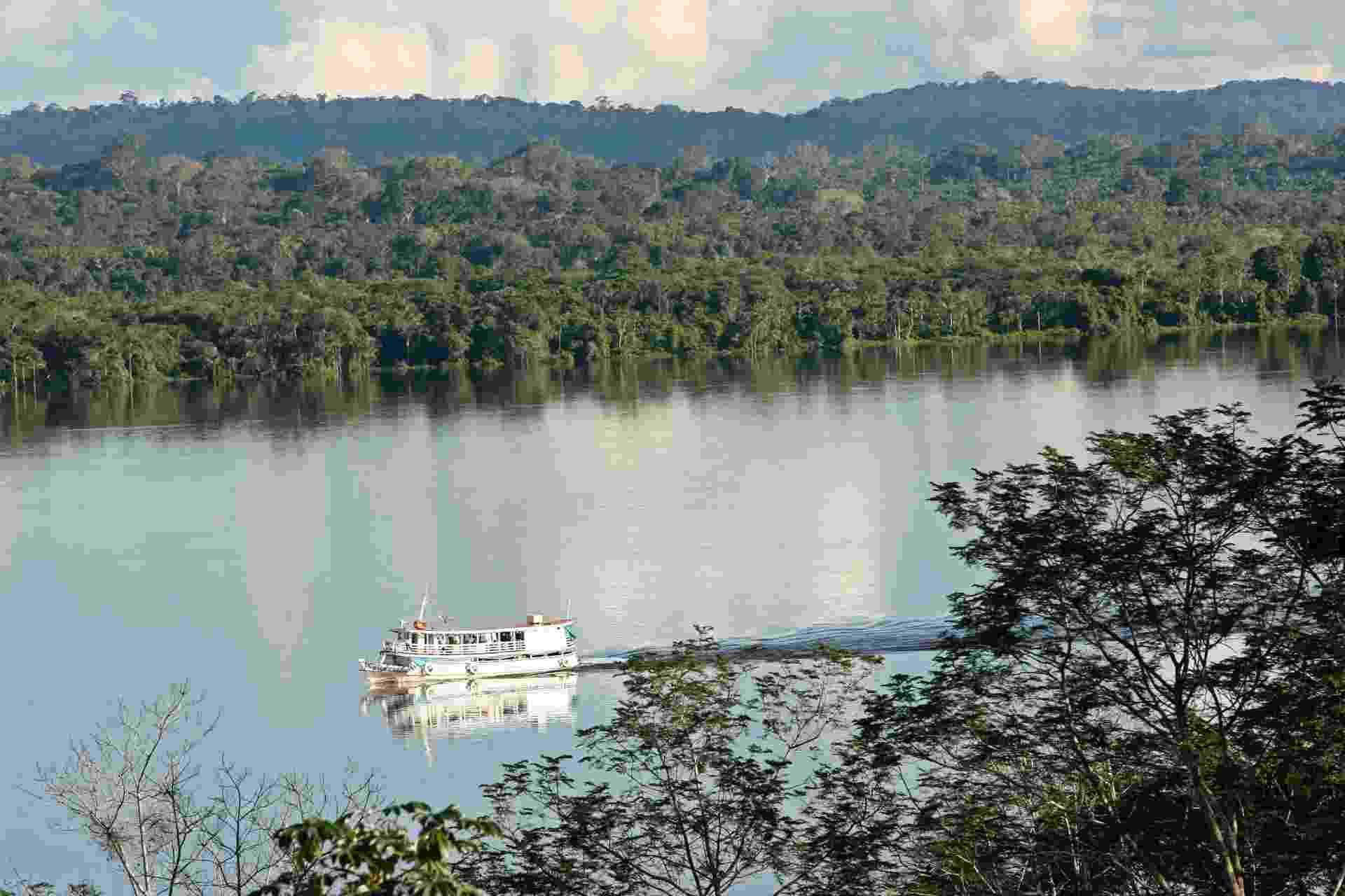7.fev.2013 - O CO2 absorvido pela Amazônia atua como uma espécie de 'fertilizante' para suas árvores, ajudando no crescimento de galhos, folhas e raízes, revela estudo a Universidade de Exeter, na Inglaterra, publicado na revista Nature - Andre Penner/AFP