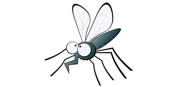 Pernilongos e mosquitos se reproduzem com maior facilidade nos meses de calor intenso - Getty Images
