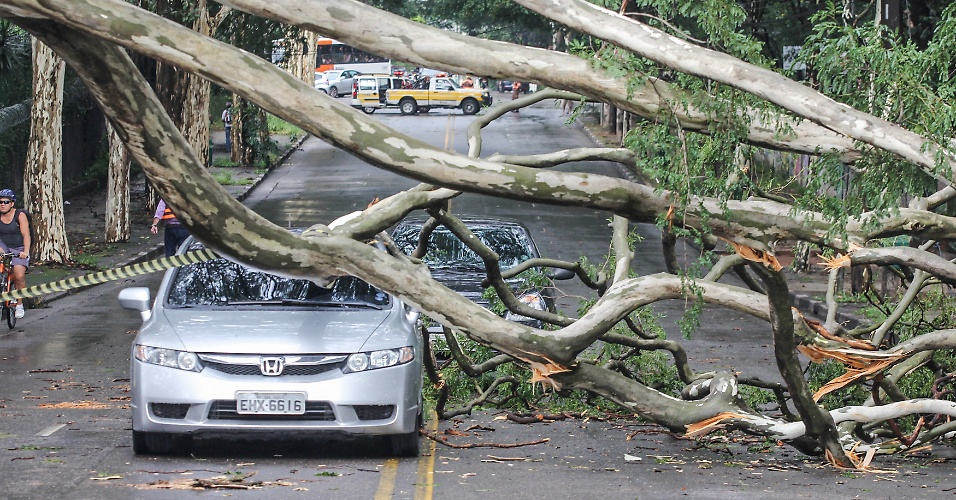 15.fev.2013 - Uma árvore de grande porte caiu sobre um carro que passava pela avenida Morumbi, na zona sul de São Paulo, na tarde desta sexta-feira (15), durante a chuva que atingiu a cidade. A via precisou ser interditada. Ninguém ficou ferido