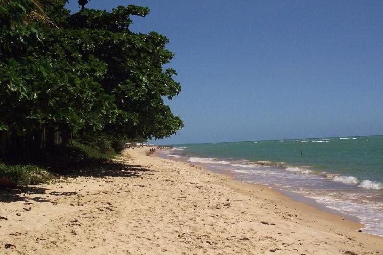 A densa vegetação de amendoeiras e coqueiros não deixa faltar sombra nas praias de Parracho e Mucugê, em Arraial D'Ajuda