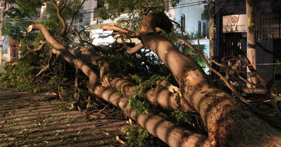 18.fev.2013 - Após forte temporal, árvore cai no meio da rua Batataes, no Jardim Paulista, zona oeste de São Paulo, na noite de segunda-feira (18)