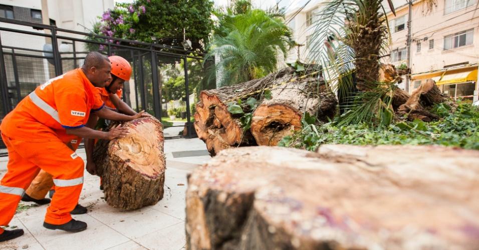 19.fev.2013 - Funcionarios da Prefeitura recolhem o tronco de uma árvore que caiu na madrugada desta terça-feira (19) na rua Tangara, na Vila Madalena, zona oeste de São Paulo