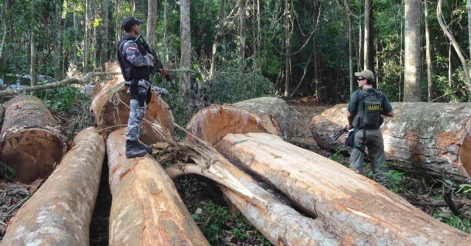 Agentes do Ibama e da polícia do Pará fazem apreensão de madeira perto da cidade de Novo Progresso, na floresta Amazônia, no ano passado
