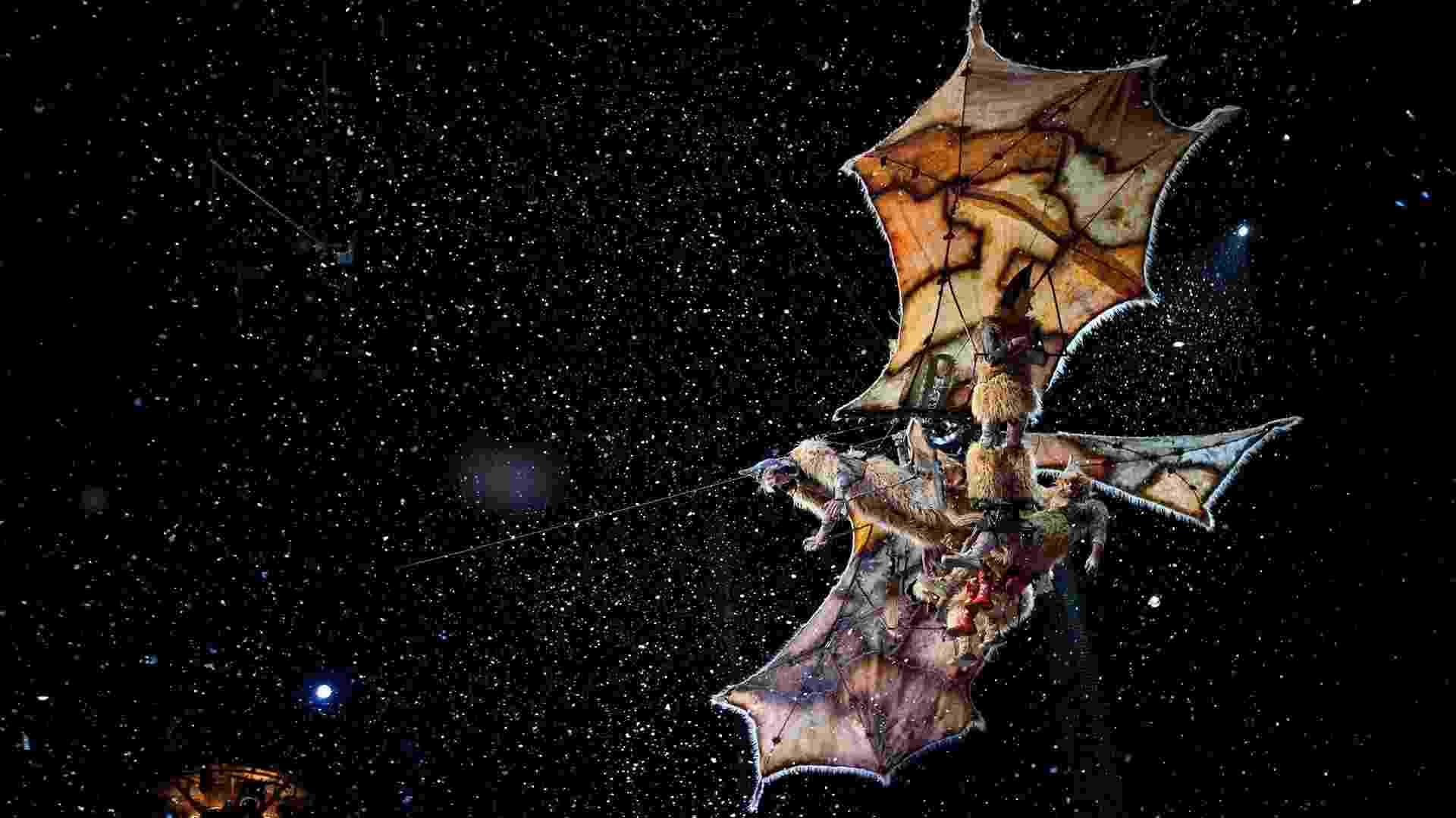 """Cena de """"Outros Mundos"""", filme do Cirque du Soleil produzido em 3D e que narra a trajetória de uma personagem pelos espetáculos da trupe - Divulgação/Paramount"""