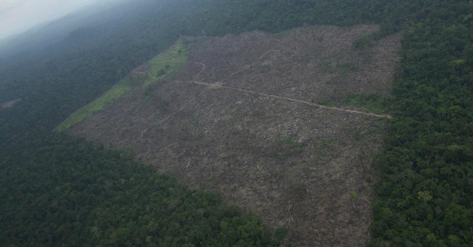 nov.2012 - Vista aérea mostra clareira na floresta recentemente aberta por fazendeiros perto de Altamira, no Pará