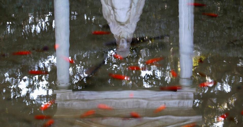 21.fev.2013 - Estátua da Virgem Maria é refletida nas águas do lago do jardim externo do Castel Gandolfo, no sul de Roma, local onde o papa Bento 16 passará os dois primeiros meses após sua renúncia