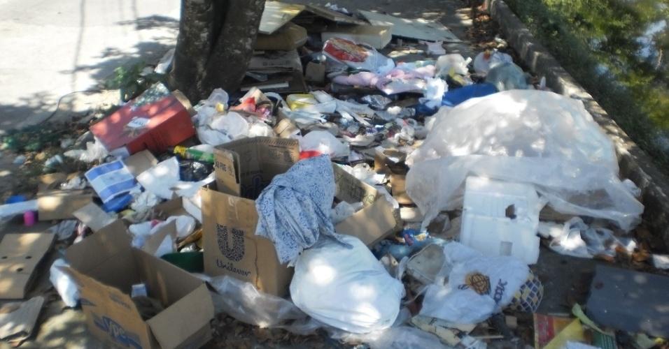 22.fev.2013 - A sujeira permanece na avenida Minas Gerais (Linha Vermelha), pouco depois da passagem do caminhão de coleta de recicláveis