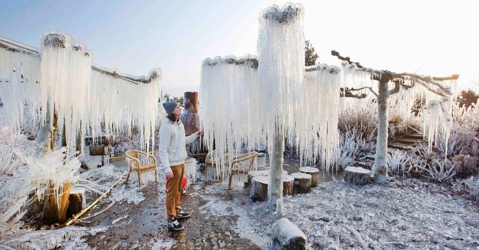 25.fev.2013 - O holandês Thijs Glas observa um jardim congelado em Heerhugowaard, na Holanda. Ele borrifou água sobre as plantas para que elas congelassem. A técnica permite proteger as plantas do frio extremo da noite, que alcança temperaturas ainda mais baixas que o interior das plantas cobertas de gelo