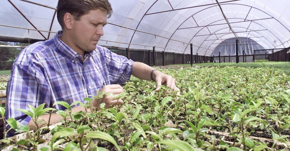 Agronomia, agrônomo, curso, educação