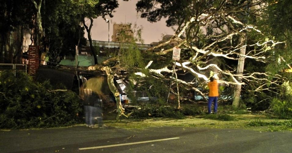 28.fev.2013 - Uma árvore de grande porte caiu na avenida Pedroso de Morais, próximo ao acesso à avenida Rebouças, na zona oeste de São Paulo. A árvore derrubou parte do muro de uma creche e atingiu uma carroça. O dono que dormia embaixo do veículo nada sofreu