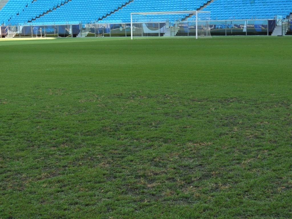 Gramado da Arena melhora e anima jogadores do Grêmio em treinamento (01/03/2013)