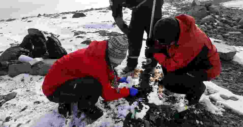4.mar.2013 - A francesa Léa Cabrol (agachada à esquerda), pesquisadora da Universidade Católica de Valparaíso (Chile), colhe amostras de sedimentos depositados sob uma fina camada de gelo, na Ilha Rei George, na Antártida, pois há uma rica flora microbiana no subsolo do continente gelado que pode transformar os esgotos das cidades em canais de água limpa. Segundo ela, as bactérias são eficientes já que podem metabolizam a matéria orgânica dos esgotos em alta velocidade - e, de quebra, gerar gás metano para uso industrial - Felipe Trueba/Efe