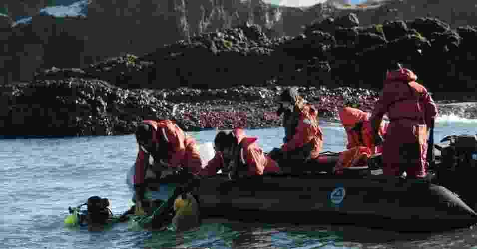 4.mar.2013 - Pesquisadores mergulham para buscar algas do fundo do mar do arquipélago das Ilhas Shetland do Sul, na Antártida, para analisar sua eficiência fotossintética. Grupo está a bordo de uma embarcação a serviço do Instituto Antártico Chileno (INACH), que realiza uma expedição com cientistas de diversos países no continente gelado - Felipe Trueba/Efe