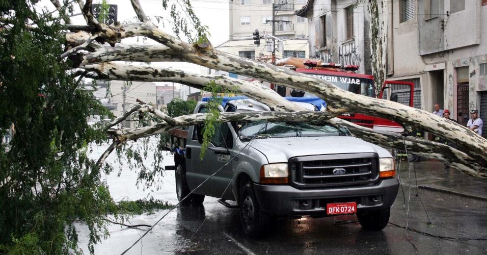 7.mar.2013 - Árvore caiu sobre um carro na Rua Zamzibar, no bairro da Casa Verde, zona norte de São Paulo. Duas pessoas ficaram presas e foram retiradas por bombeiros