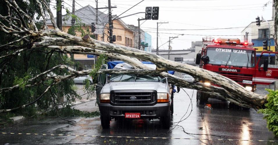 7.mar.2013 - Árvore cai sobre caminhonete na rua Zamzibar, no bairro da Casa Verde, na zona norte de São Paulo (SP), após a chuva desta quinta-feira (7). Duas pessoas ficaram presas e foram retiradas por bombeiros