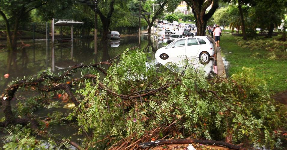 8.mar.2013 - Chuva causa estragos e alagamento nas proximidades do Tribunal de Contas do Estado de São Paulo, zona sul de São Paulo (SP), nesta sexta-feira