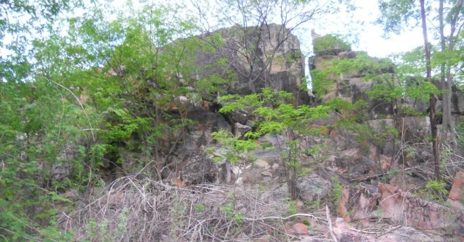 10.mar.2013 - Ambientes rochosos e de pedregulhos são o habitat do rato-rabudo em Assunção do Piauí