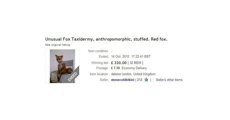Bizarra, raposa empalhada vira meme depois de ser posta à venda no eBay