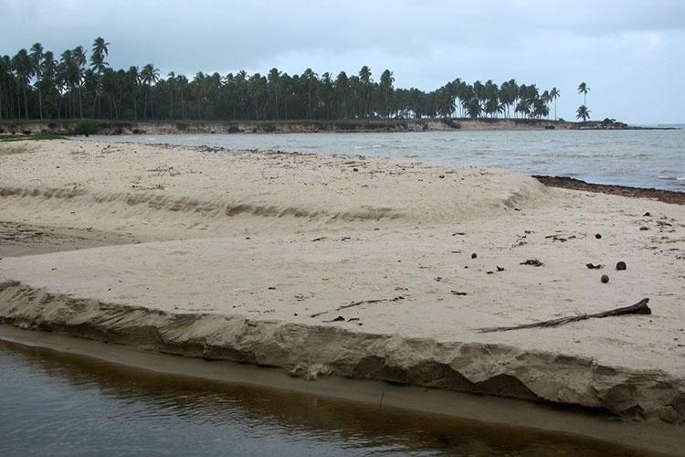 Lado esquerdo da praia de Paripueira é mais deserto e possui centenas de coqueiros