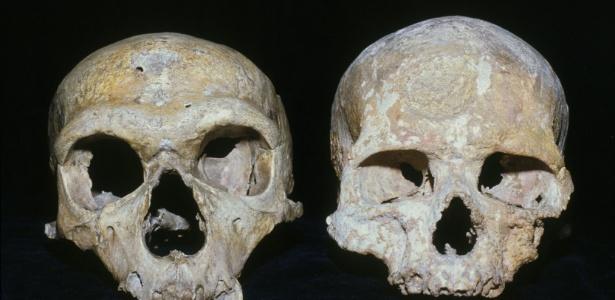 O crânio do Neandertal (esq.) apresenta olhos maiores do que os do crânio de um humano moderno