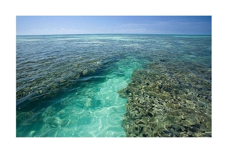 Piscinas naturais estão entre as mais preservadas de Alagoas