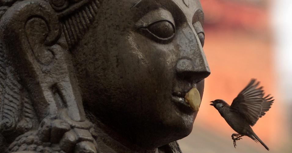 20.mar.2013 - Pássaro pega alimento da estátua do deus hindu Garuda na praça Durbar em Kathmandu, no Nepal. Esta praça fica no centro da capital e está listada como patrimônio mundial pela Unesco